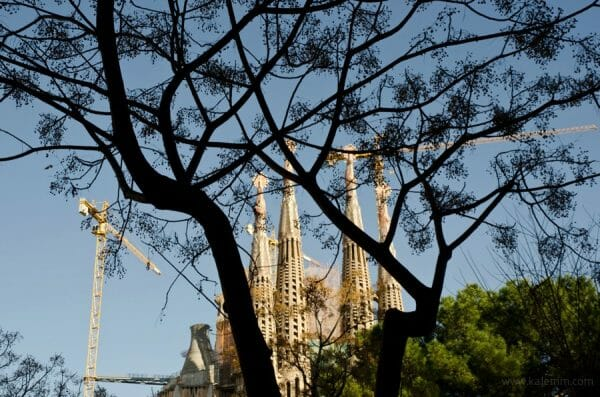 Antonio Gaudi's Sagrada Familia, seen through silhouette of a tree