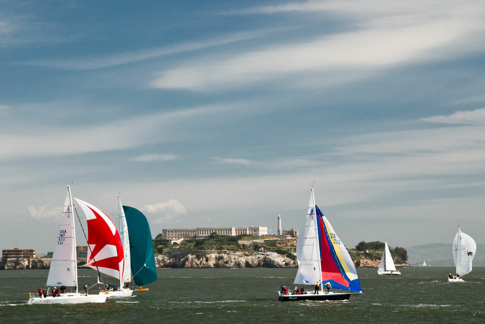 Sailboat regatta in front of Alcatraz
