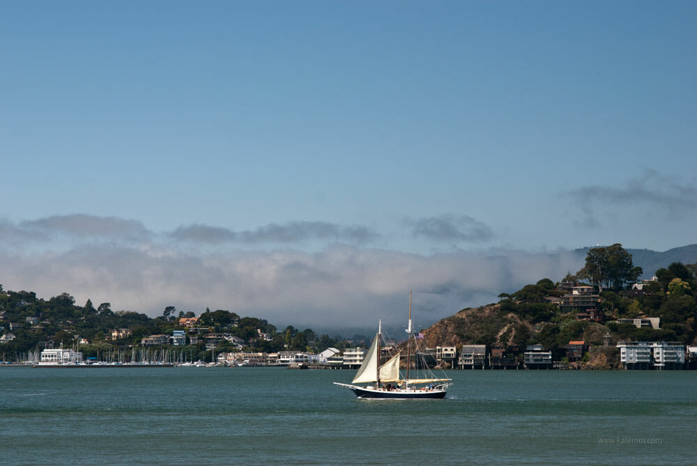 sailboat near Tiburon, San Francisco Bay